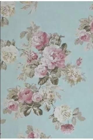 Englische Rosen eisblau